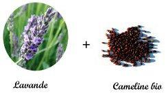 Nos bouillottes micro-ondes contiennent de la lavande et des graines de cameline bio
